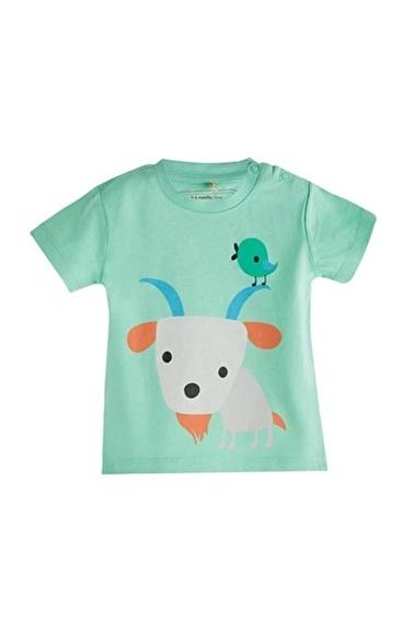 Soobe Kısa Kol Tişört Erkek Bebek Giyim (0-2 Yaş) Yeşil